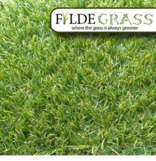 Fylde_Grass_Artificial_Grass_Miami_Birds