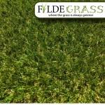 Fylde Grass Roma Artificial Grass Top.