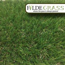 Fylde Grass Ibiza