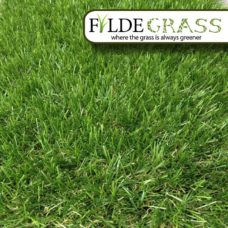 Hampshire Artificial Grass
