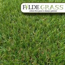 Fylde Grass Lytham Artificial Grass Top