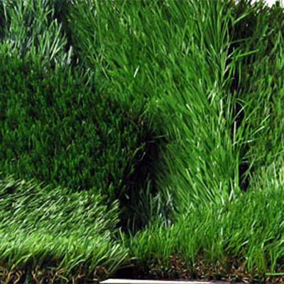 top reasons to get artificial grass variety