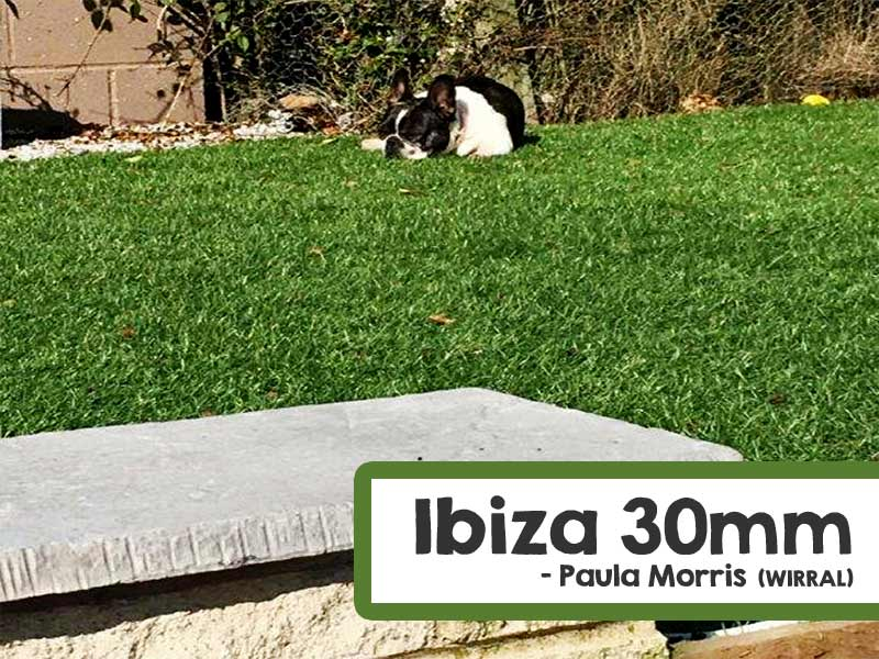 Customer Installed Ibiza Artificial Grass