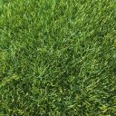 Fylde Grass Wiltshire Artificial Grass top view